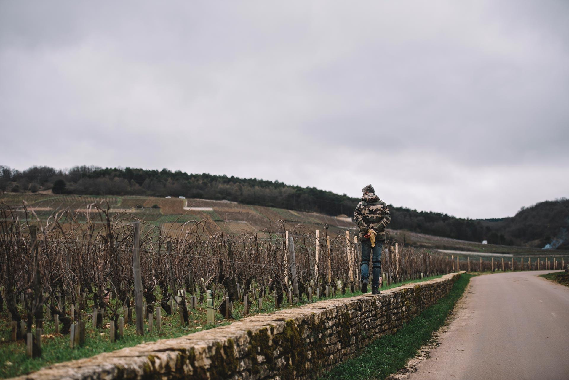Domaine Leroy   Romanée Saint Vivant   Bourgogne