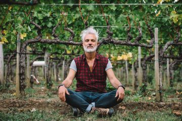CORDON,  THE HANDBOOK OF VINE PRUNING BY MARCO SIMONIT